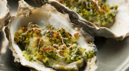 Sustainable oysters in shells with garlic & breadcrumbs