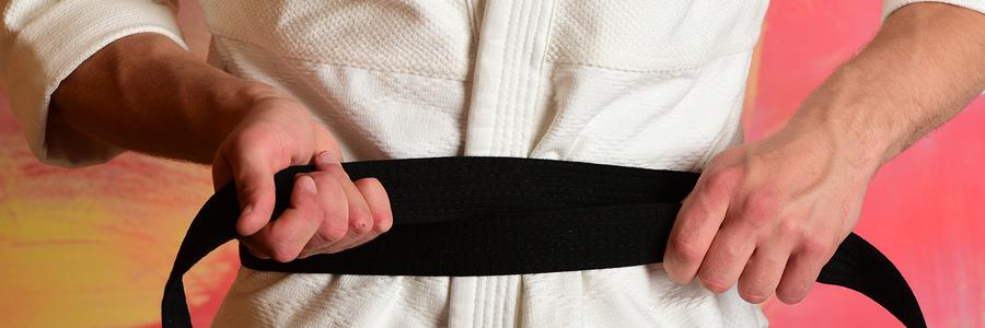jujitsu small business strategy
