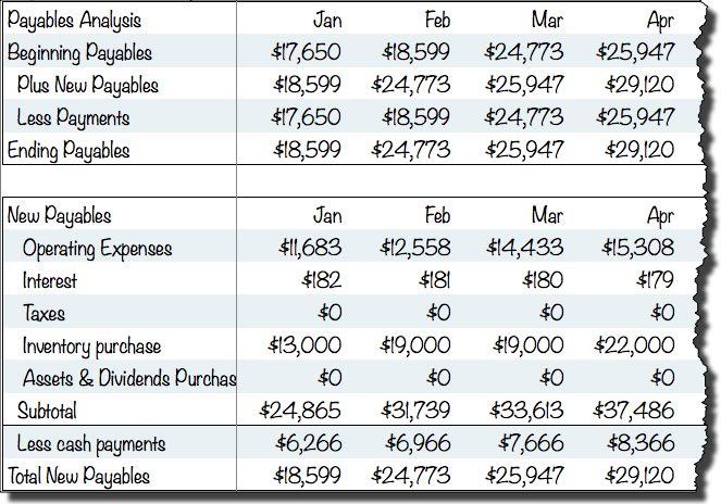 Sample Payables Cash Flow Assumptions