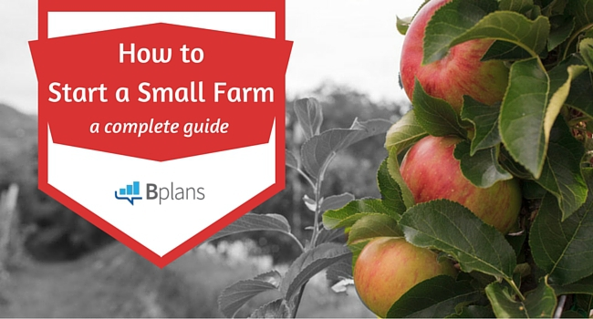 How to Start a Farm
