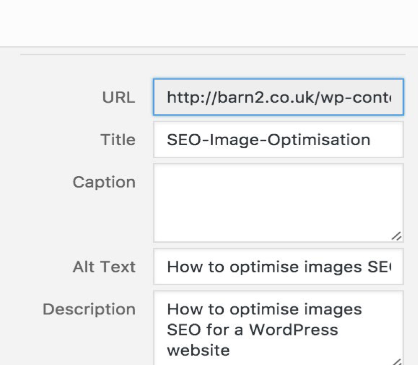 search optimization captioning images
