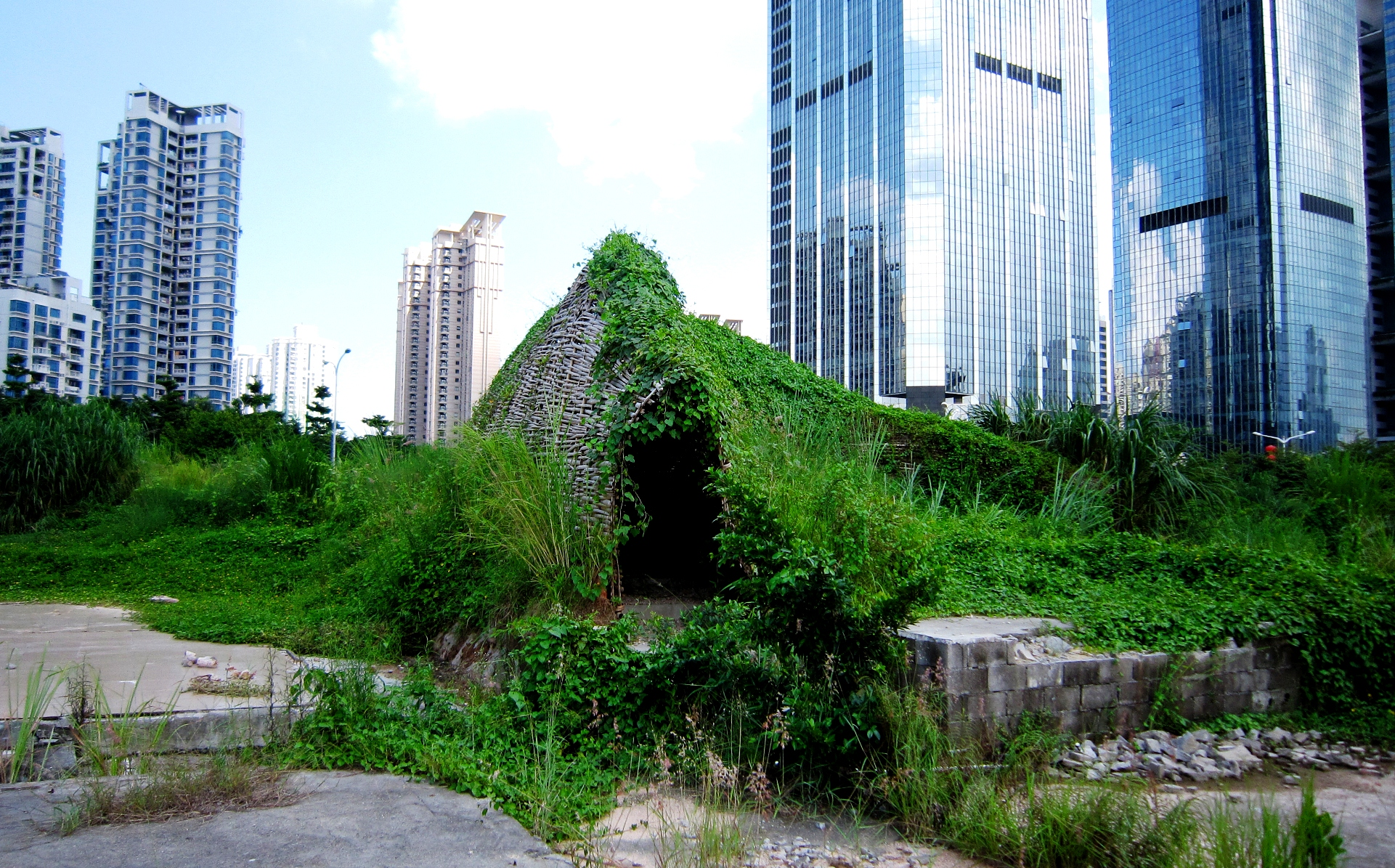 Bug_Dome_by_WEAK!_in_Shenzhen