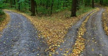 bigstock-Landscape-with-fork-rural-road-105880883.jpg