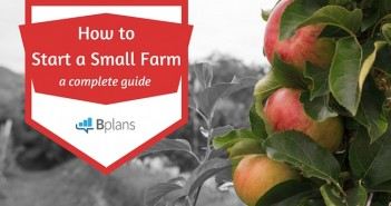 How-to-Start-a-Small-Farm-1.jpg